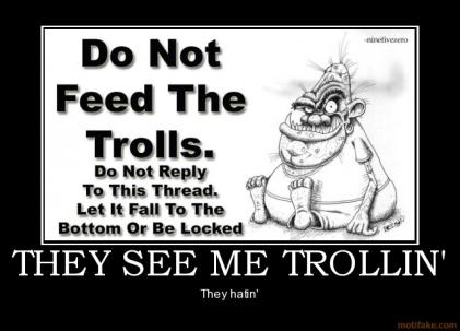 they-see-me-trollin-trollin-hatin-internet-troll-demotivational-poster-1284530427.jpg