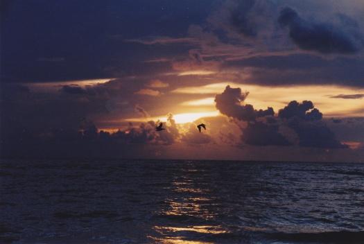 jupiter-beach_sunrise