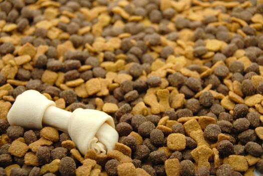 dog-food-1024x685